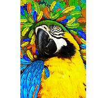 Gold and Blue Macaw Parrot Fantasy Photographic Print