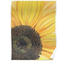 Sunflower close up Poster
