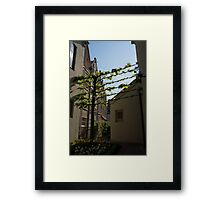 Any Space Can Be a Garden - Creative Urban Gardening From Amsterdam Framed Print