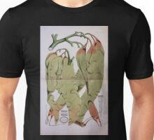 The botany of the Antarctic voyage of H M  discovery ships Erebus and Terror in the Years 1839 1843 Joseph Dalton Hooker V1 184 Unisex T-Shirt