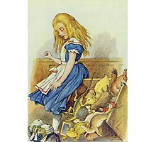 John Tenniel - Alice Upsets The Jury-Box, Illustration From  Alice In Wonderland. Girl portrait: cute girl, girly, female, pretty angel, child, beautiful dress, smile, little, kids, baby Photographic Print