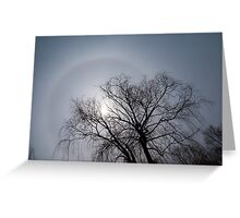Sun Halo, Trees And Silver Gray Winter Sky Greeting Card