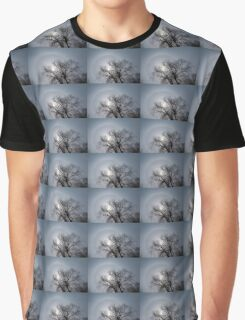 Sun Halo, Trees And Silver Gray Winter Sky Graphic T-Shirt
