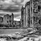Raglan Castle by flashcompact