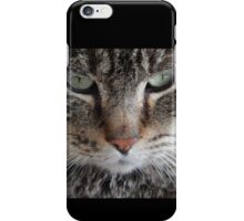 Bob the Cat iPhone Case/Skin