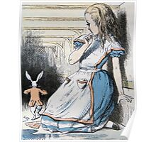 John Tenniel - The Pool Of Tears, Alice S Adventures In Wonderland. Girl portrait: cute girl, girly, female, pretty angel, child, beautiful dress, face with hairs, smile, little, kids, baby Poster