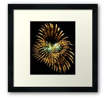 Abstract Light Framed Print