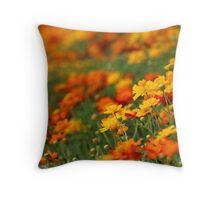 Yellow and orange cosmos flowers Throw Pillow