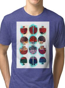 Multifaceted No.2 (Light, Time & Facade Series) Tri-blend T-Shirt