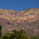 Purmamarca Landscape by DianaC