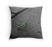 camouflage/signal Throw Pillow