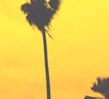 SUNSET PALMS Sticker