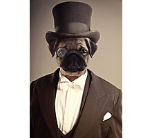 (Very) Distinguished Dog Photographic Print
