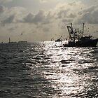 Fishing by Claudia Sanchez