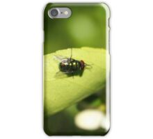 Fly on a Plant iPhone Case/Skin