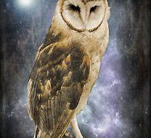 Wise Old Owl - Image Art by Jordan Blackstone
