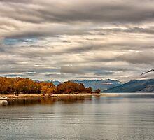Serenity at Glenorchy, NZ by Chris Brunton