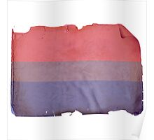 VINTAGE BISEXUAL FLAG Poster
