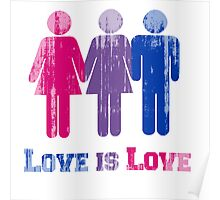 BISEXUAL LOVE IS LOVE Poster