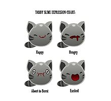 Tabby Slime Expression Chart Photographic Print