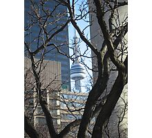CN Tower, Downtown, Toronto, Canada Photographic Print