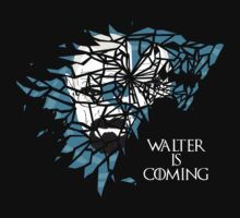Breaking Bad Walter is Coming - Game of Thrones by markwild
