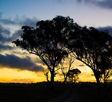 Uralla Sunset by Laura Sykes