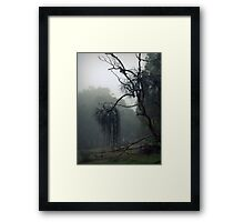 On The Susso Framed Print