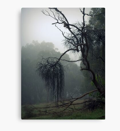 On The Susso Canvas Print
