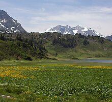 Austrian mountains in summer by caughtinmotion