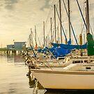 Cooper River Marina Sunrise by Wendy Mogul