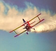 Vero Beach Air Show Wing Walker by Noble Upchurch
