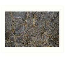 Rock Layers Texture Art Print