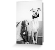 Whippet Wedding Greeting Card