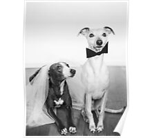 Whippet Wedding Poster