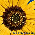 You Brighten My Day by Kathleen  Bowman