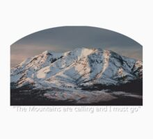 The Mountains are calling and I must go Tee Shirt or Sticker by Alan Mitchell