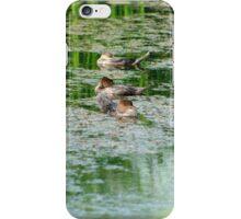 Mergansers in a Pond iPhone Case/Skin