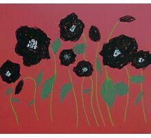 Black Poppies Photographic Print