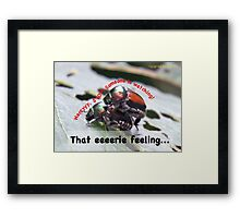 That eerie feeling someone is watching you… Framed Print