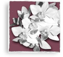 Pretty in Pink, Orchid Photography Art Canvas Print