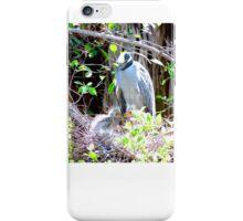 Night Heron Mom iPhone Case/Skin