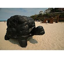 Rubber Tyre Tortoise @ Sculptures By The Sea Photographic Print