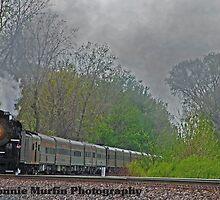 765 train by Vonnie Murfin