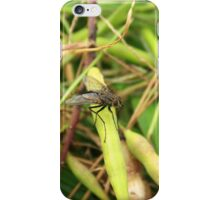 Black Fly on a Leaf iPhone Case/Skin
