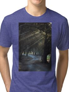 Sun rays in the forest Tri-blend T-Shirt