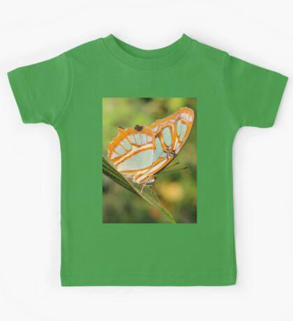Malachite Butterfly (Siproeta stelenes) Kids Tee