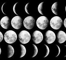 Phases of the Moon by marissadiane