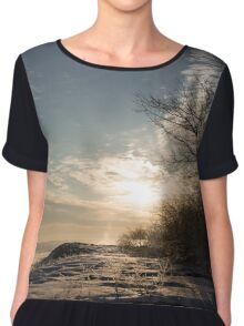 Frosty Grasses, Shrubs and Rocks on the Shore of Lake Ontario in Toronto Chiffon Top