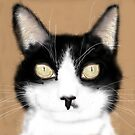 This is a drawing of my cat... by Ann Morgan